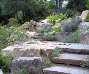 thumbs_rockery-1-main-lg